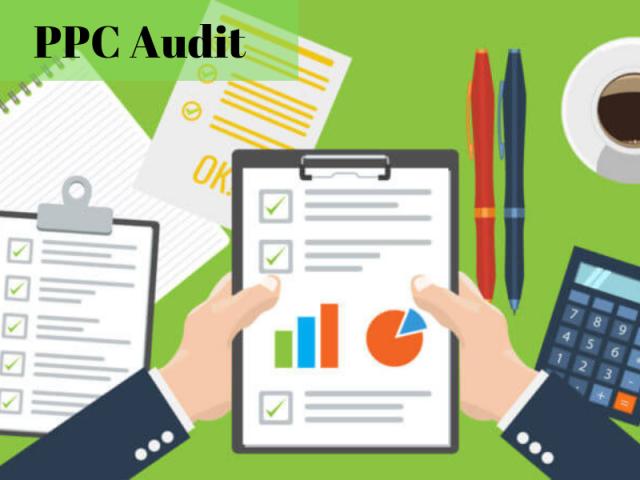 PPC Audit.
