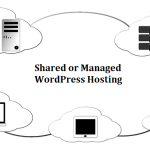 Shared or Managed WordPress Hosting: Which One Is Better